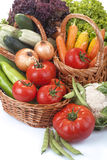 Vegetables in the basket. Freshly picked organic vegetables,tomatoes, lettuce,onions, carrots, corn, peas and mushrooms and potatoes Royalty Free Stock Image