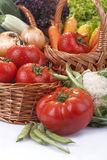 Vegetables in the basket. Freshly picked organic vegetables,tomatoes, lettuce,onions, carrots, corn, peas and mushrooms and potatoes Stock Images
