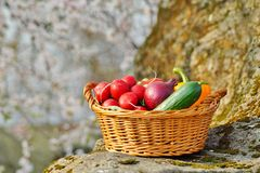 Vegetables in the basket Stock Image