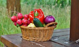 Vegetables in the basket Royalty Free Stock Images