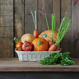 Vegetables in a basket. Pumpkins, tomatoes, carrots. Stock Images