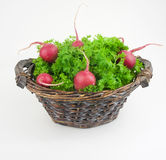 Vegetables in the basket on white background. Composition with v Stock Photography