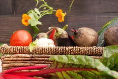 Vegetables in a basket on a wooden background royalty free stock images