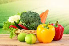 Vegetables in basket on wooden and blur nature background. Stock Image