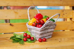 Vegetables in basket on yellow banch Stock Photography