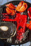 Vegetables BBQ Royalty Free Stock Photo