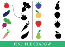 Vegetables, berries and fruits. Find the correct shadow. Game fo. R children. Vector illustration Royalty Free Stock Images