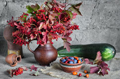 Vegetables and berries on the old boards  gray background Stock Image