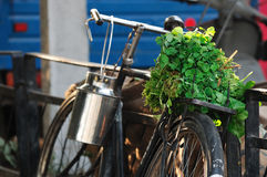 Vegetables on bike Stock Images