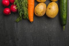 vegetables on a black background royalty free stock image