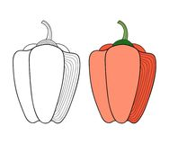 Vegetables. Black and white illustration for coloring book or page. Vector Stock Image