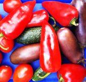 Vegetables on a blue background Stock Images