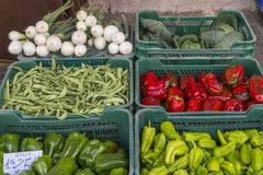 Vegetables bought Stock Images