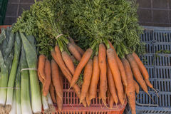 Vegetables bought Royalty Free Stock Images