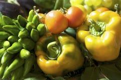 Vegetables bouquet Stock Photos