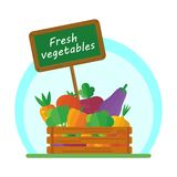 Vegetables in box Royalty Free Stock Image