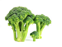 Vegetables Broccoli Stock Photos