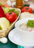 Vegetables broth Stock Photography