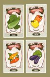 Vegetables card set. Set of vector card templates with healthy food vegetables on vertical vintage tags zucchini, pepper, chili, eggplant Stock Photo