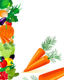 Vegetables carrots Royalty Free Stock Image