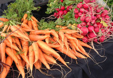 Vegetables, carrots and radishes at a farmers market Royalty Free Stock Photo