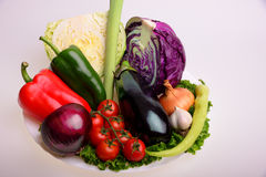 Vegetables. Cherry tomato, eggplant, onion, garlic, purple cabbage, lettuce and parsley Stock Photography