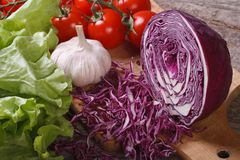 Vegetables: chopped red cabbage, lettuce, tomatoes and garlic Royalty Free Stock Images