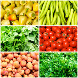 Vegetables collage Royalty Free Stock Photography
