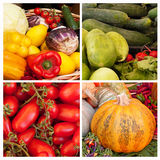 Vegetables collage Stock Image
