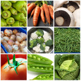 Vegetables collage. Organic vegetables collection of peppers,carrots,mushrooms,beans,tomatoes,cauliflower,broccoli,peas,cabbage,and onions. See all my food & royalty free stock photos