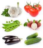 Vegetables collection Royalty Free Stock Photos