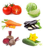 Vegetables collection Stock Image