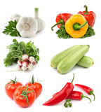 Vegetables collection Stock Photos