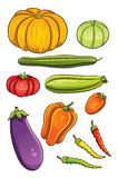 Vegetables Collection Royalty Free Stock Photo