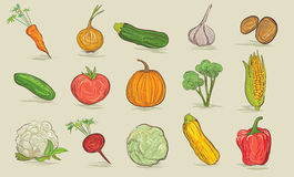 Vegetables collection Royalty Free Stock Image