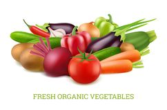 Vegetables collection 3d. Organic vegan healthy food nutrition vector realistic pictures. Food vegetarian, vegetable tomato and eggplant, onion and carrot stock illustration