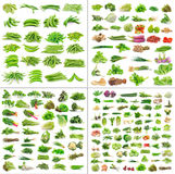 Vegetables Collection On White Background Royalty Free Stock Photos