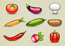 Vegetables collection. Set of eight colorful vegetables and one mushroom Royalty Free Stock Image