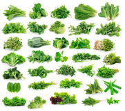 Vegetables collection  on white background Royalty Free Stock Photo