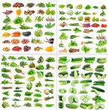 Vegetables collection on white background Stock Images
