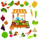 Vegetables color icons set. Organic food logo in the middle for web and mobile design Royalty Free Stock Photos