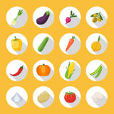 Vegetables Colored  Icon Flat Set. Vegetables colored icons flat set in circles with harvest grown in the garden vector illustration Royalty Free Stock Photography