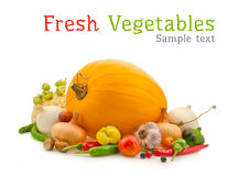 Vegetables composition Stock Photo