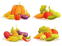 Vegetables Compositions 4 Icons Square Set Royalty Free Stock Image