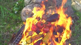 Vegetables are cooked in the fire on the grill, close-up slow motion stock video