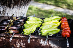 Vegetables cooked on the grill. Vegetables are roasting on the coals royalty free stock photos