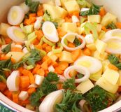 Vegetables for cooking a soup Royalty Free Stock Photos
