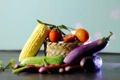 Vegetables. Corn chilli eggplants tomato Royalty Free Stock Image