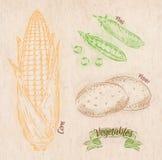 Vegetables corn, peas, potatoes Stock Photos