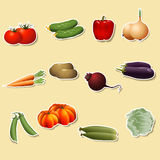 Vegetables: corn, potatoes, tomatoes, carrots, peppers Stock Photos